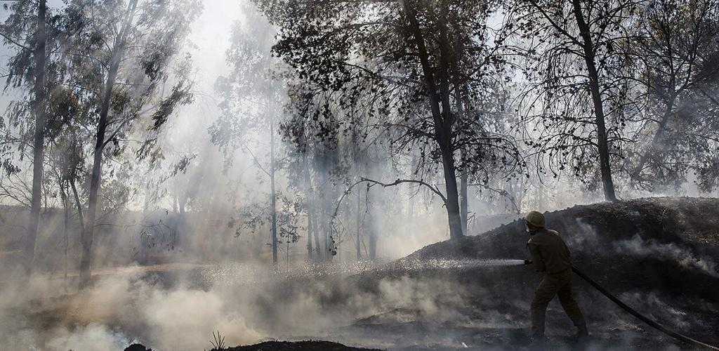 Izraelyje per rekordinę kaitros bangą kovojama su miškų gaisrais